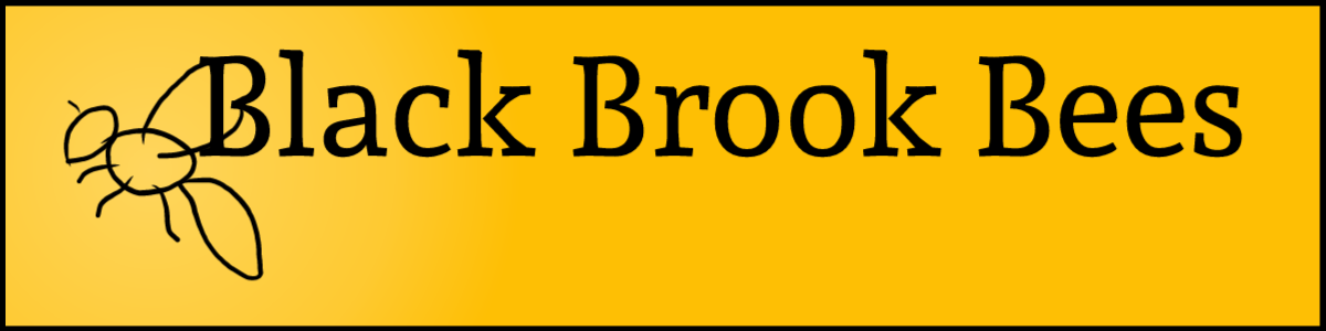 Black Brook Bees