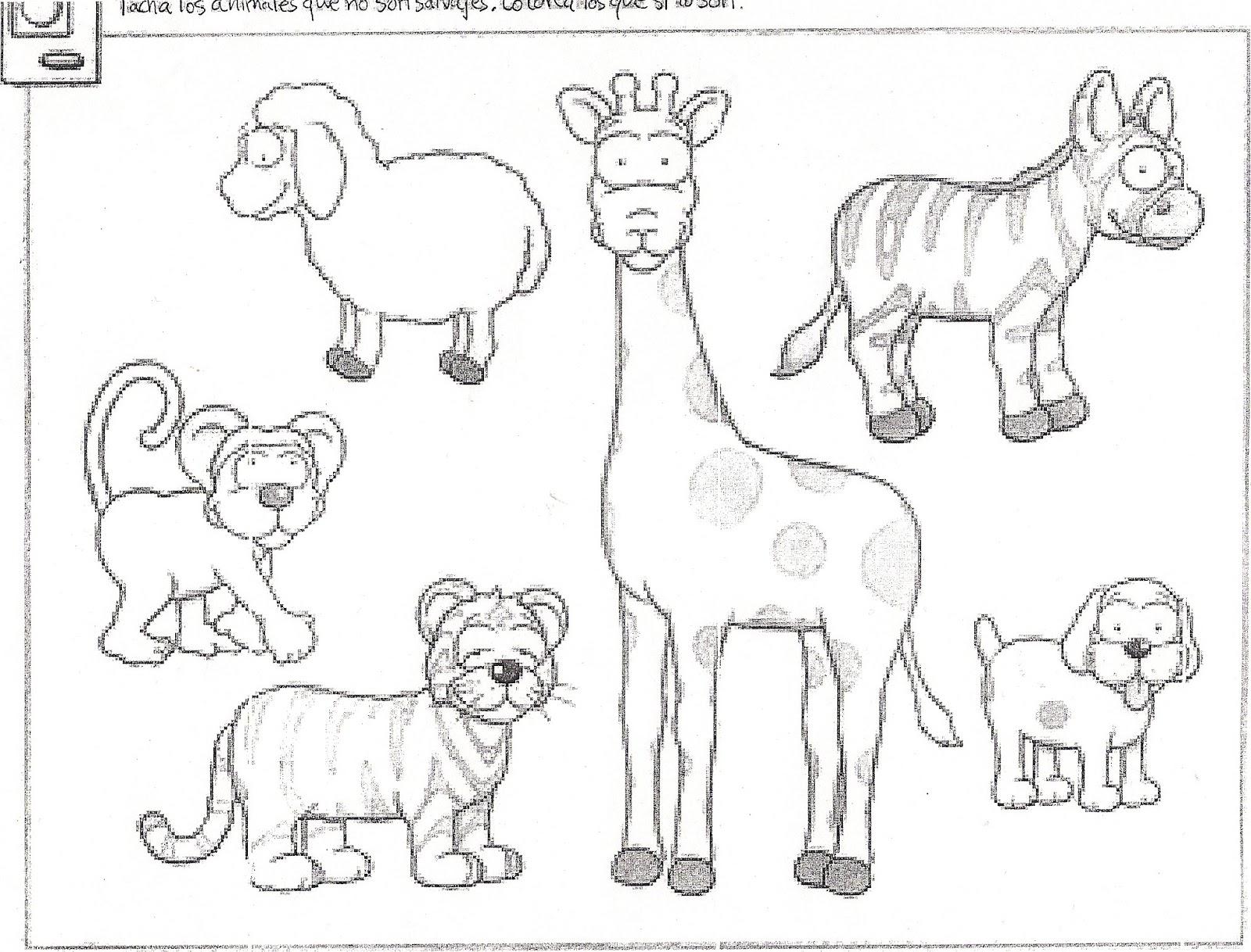 LOS ANIMALES DE LA GRANJA: 2012