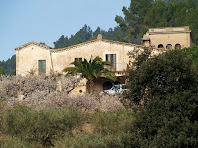La masia de Can Pubill amb els seus camps de cireres, des del Camí de Can Palós