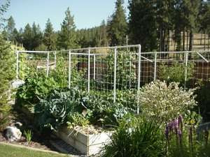 ~ Build Beautiful Raised Beds ~