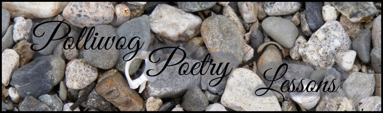 Poetry Lessons Welcome