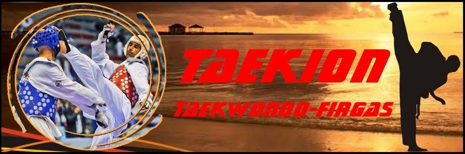 Taekion - Taekwondo Club Firgas