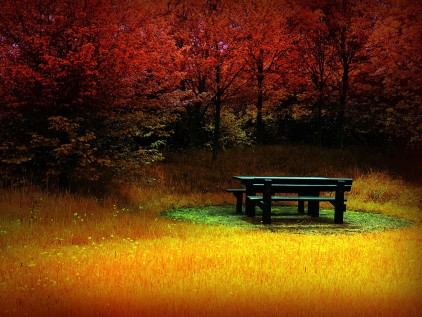 background free autumn,autumn leaves background free,autumn desktop background free,,