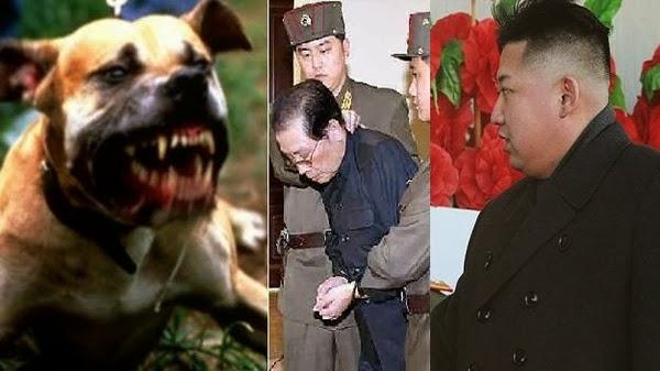 الزعيم الكوري الشمالي زجّ عمه عارياً في قفص نهشته فيه الكلاب