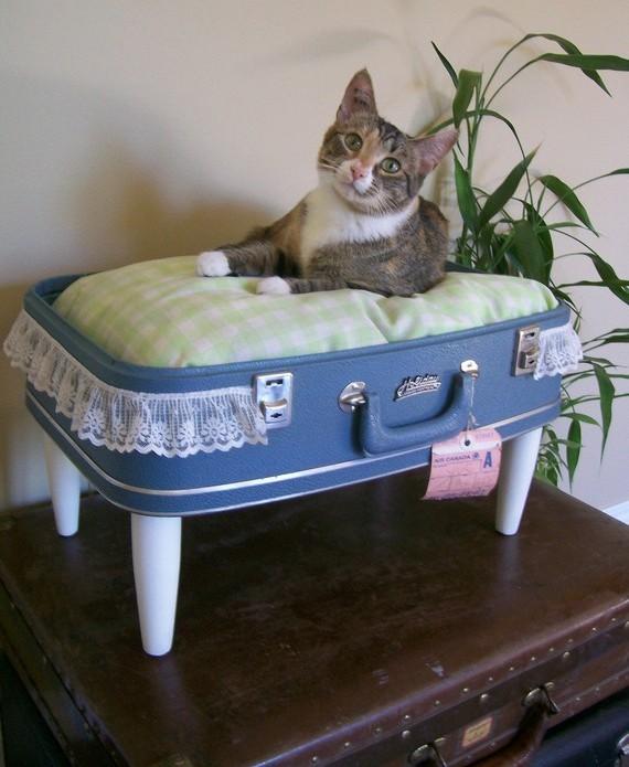 Preciosas camas para gatos hechas con maletas viejas for Cama para gatos