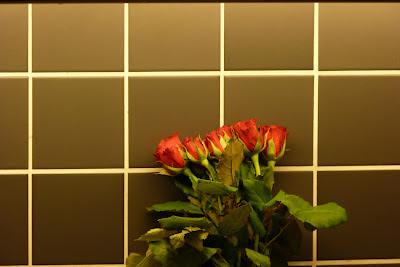 Röda rosor mot balgrund av mörkt kakel. foto: Reb Dutius