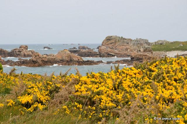 Bretagne - Plougrescant - randonnée