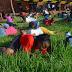 """Religioso sul-africano faz seguidores comerem grama para """"ficar perto de Deus"""""""