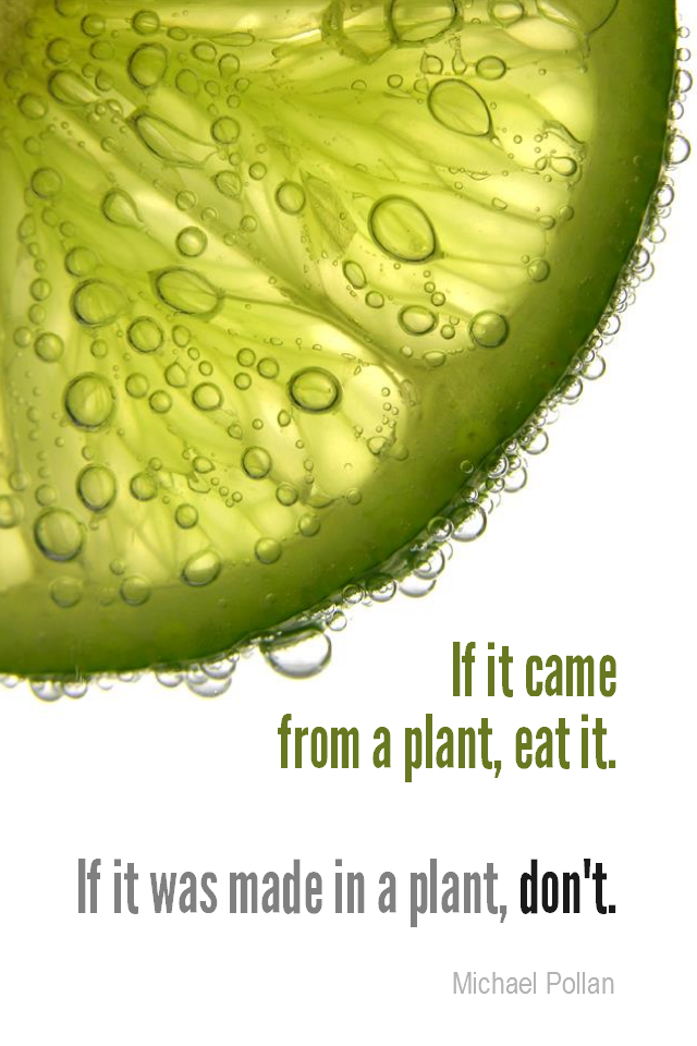 visual quote - image quotation for HEALTHY EATING - If it came from a plant, eat it. If it was made in a plant, don't. - Michael Pollan