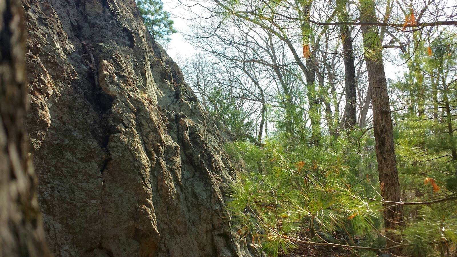 looking up to Indian Rock