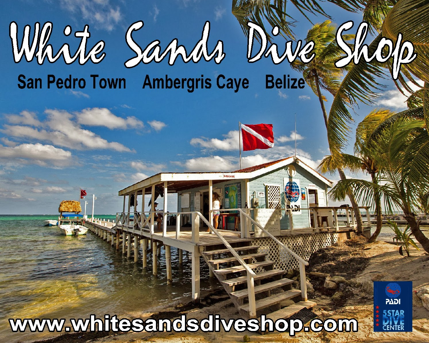 New schedule for snorkeling and diving at white sands dive for The dive shop