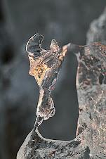 Is djur