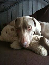 My Baby: Tucker