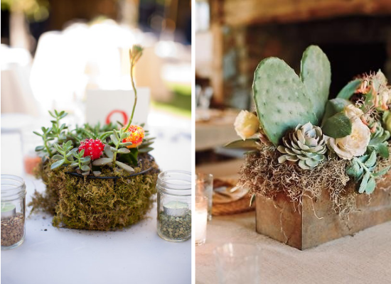 Centritavola da matrimonio alternativi, alternative wedding centerpieces, succulents wedding centerpieces, centritavola con piante grasse