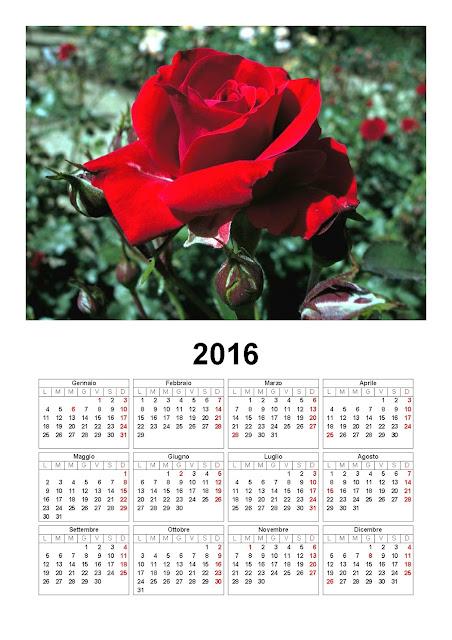 Calendario 2016 - rosa