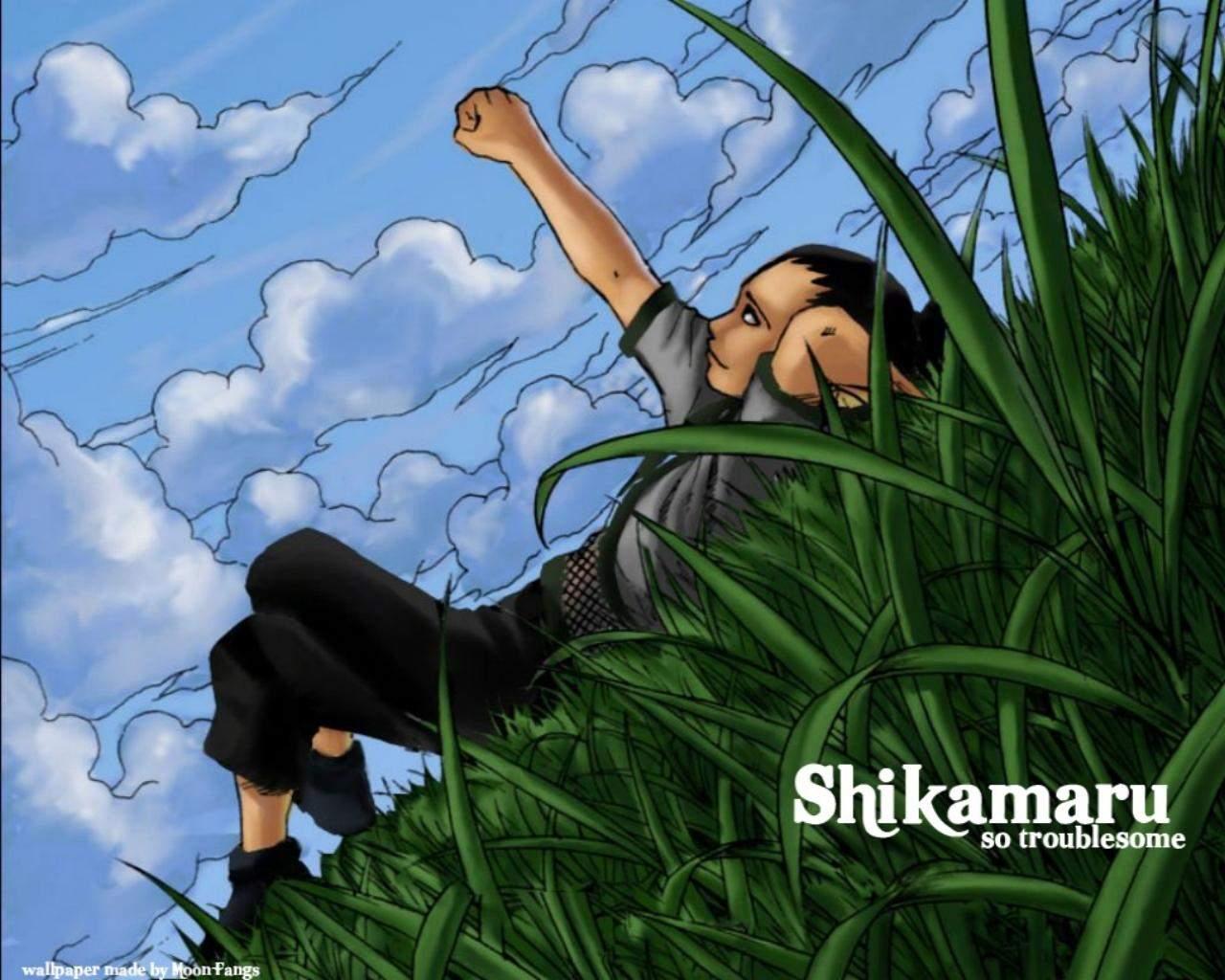 http://1.bp.blogspot.com/-L7CAHy1iUyo/TpuNeILOpcI/AAAAAAAAAIk/JHKfN51qWvU/s1600/13-wallpaper-shikamaru-1571617212.jpg
