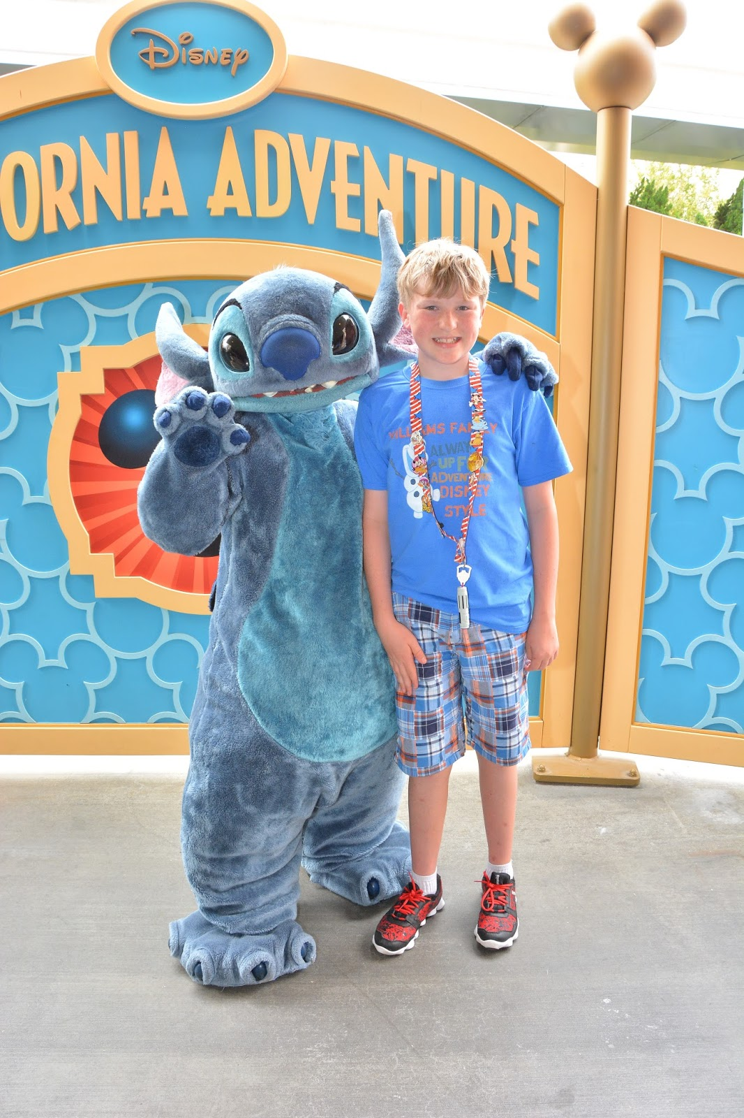 Williams family perks of traveling with disney rewards visa in both walt disney world and disneyland disney rewards visa holders are offered a special character meet and greet opportunity m4hsunfo
