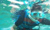 Snorkeling di Taman Laut Pantai Timur Pangandaran