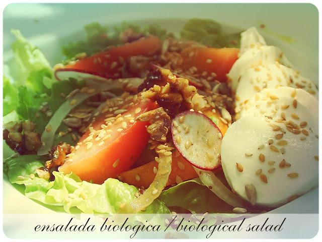 ensalada-biologica