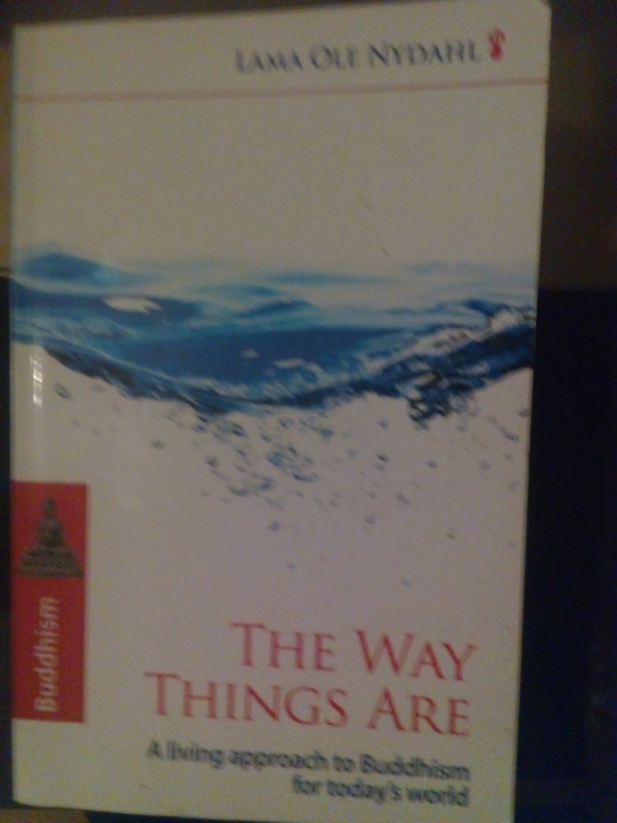 'The Way Things Are' by Lama Ole Nydahl.