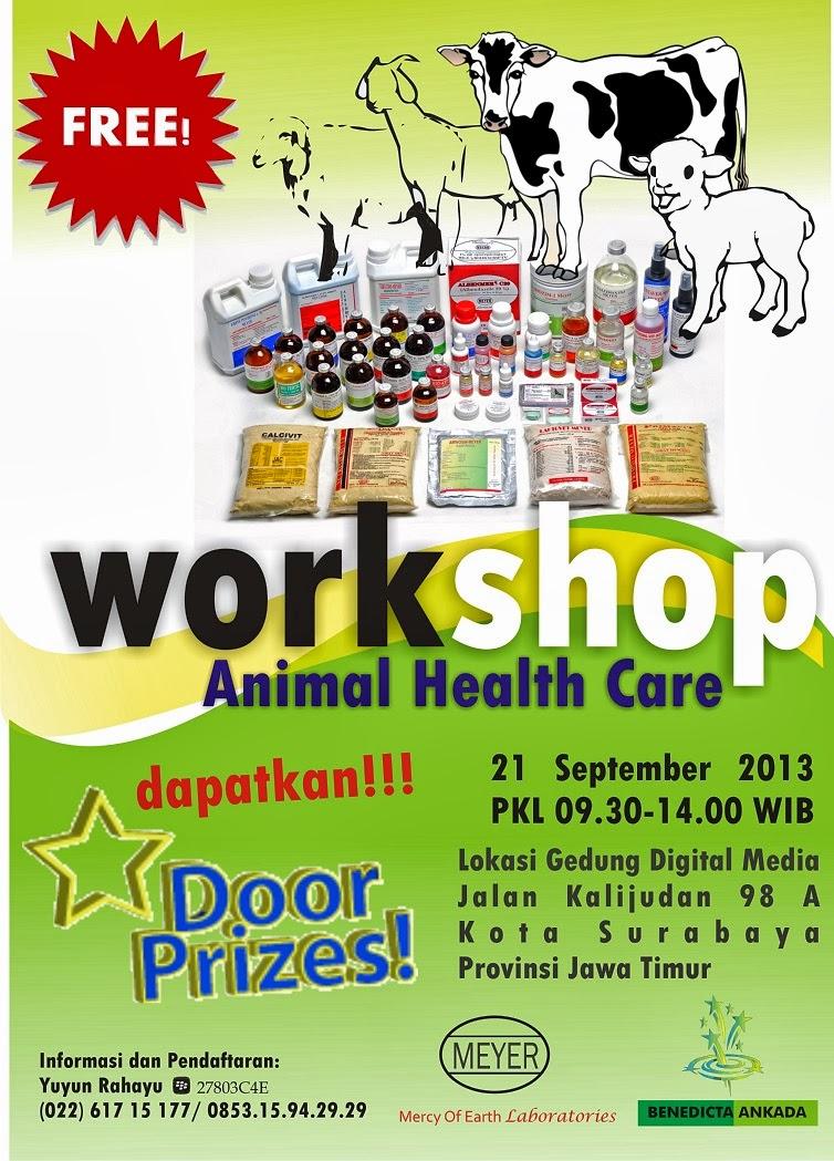 Workshop Obat Meyer di Surabaya