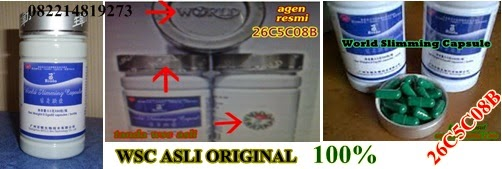 obat pelangsing wsc biolo asli original