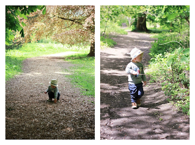 toddler in the forest
