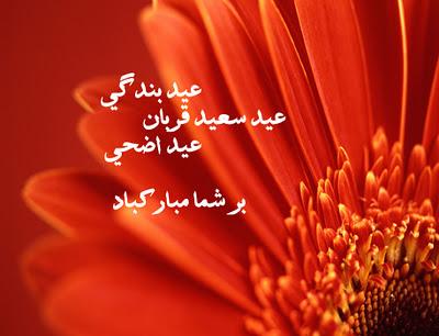 Eid ul adha akhtar pashto nice ghazal poetry eid ul adha farsi eid ul adha akhtar pashto nice ghazal poetry eid ul adha farsi wishes with design m4hsunfo