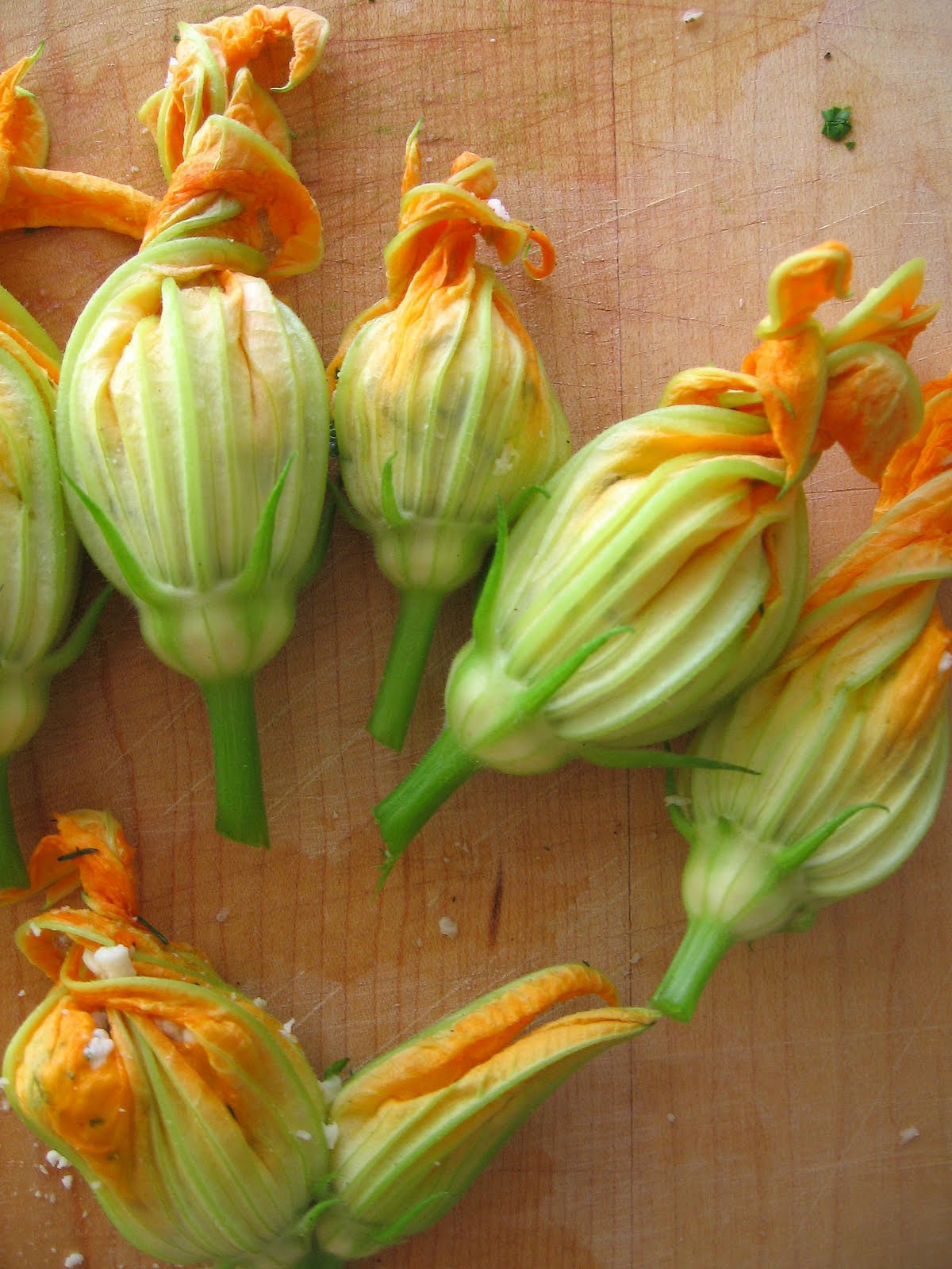 sweetsugarbean Savouring Summer Zucchini Flowers Stuffed with Bocconcini an