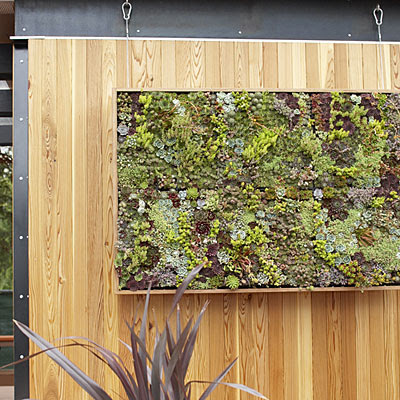 The rikrak studio my favourite things vertical for Vertical garden wall systems
