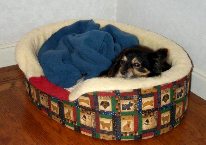 Mitzi in her new fur-lined bed