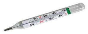 Termometer Raksa
