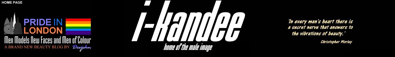 i-kandee Blog