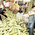 Rechazan productores mexicanos la compra de maíz a E.U.
