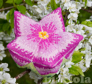Igielnik lilia