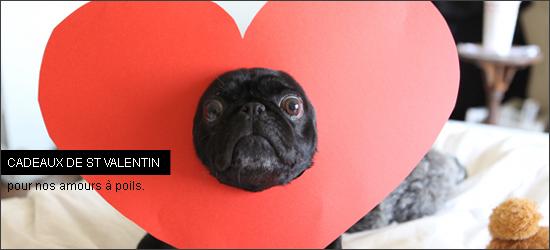 Cadeaux de st valentin pour nos chiens woof mag 39 le for Dans nos coeurs 44