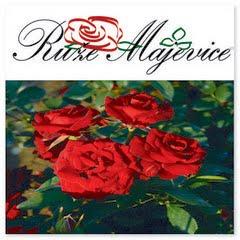 Ruže Majevice - rasadnik ruža