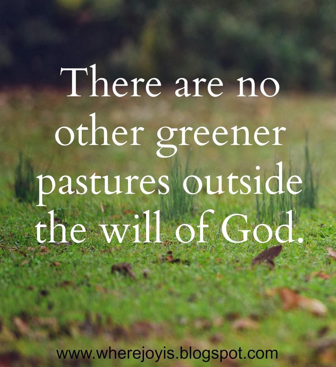 Go in search of greener pastures - Crossword clues ...