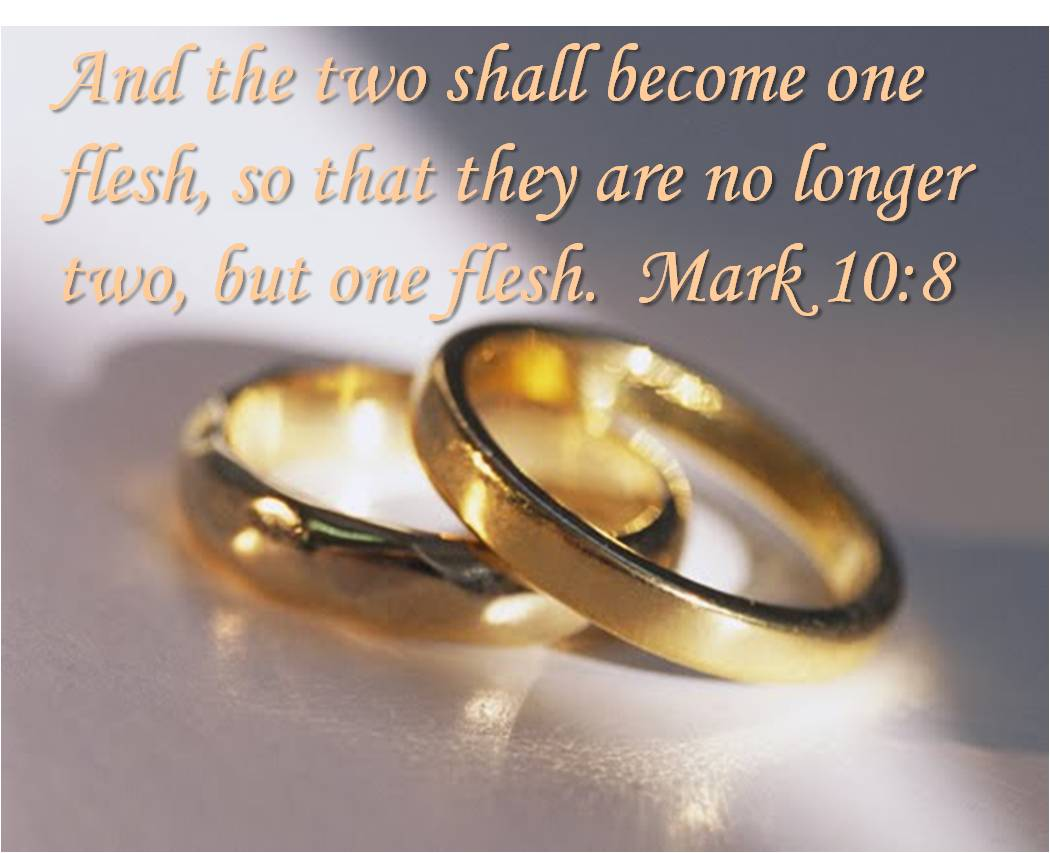 Bible Quotes On Marriage Art Of Facts Marriage And Secular Humanist