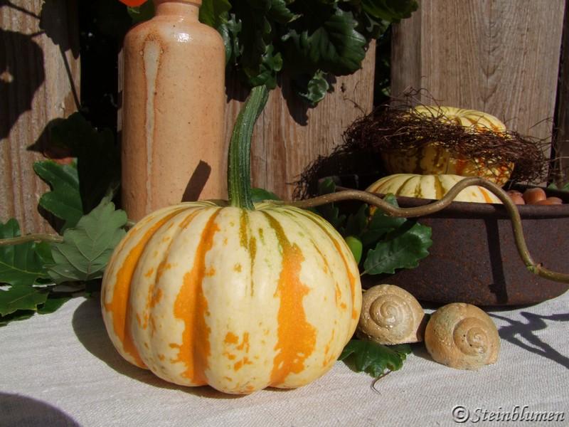 SteinBlumen Herbstkranz aus Eichenlaub