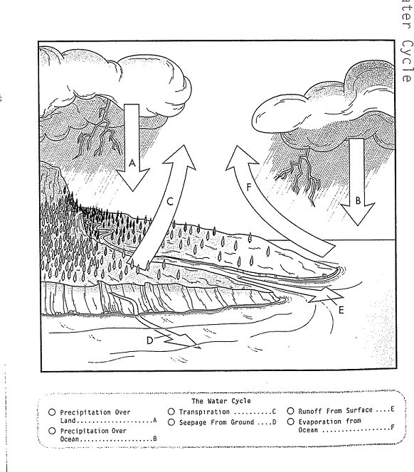 water cycle sci 207 The water cycle is all about storing water and moving water on, in, and above the earth although the atmosphere may not be a great storehouse of water, it is the superhighway used to move water around the globe.
