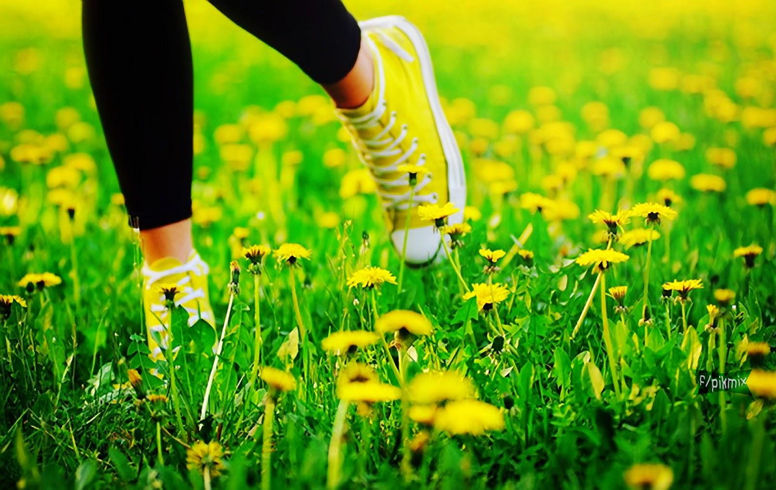 Wallpaper - Tenis amarillos - yerba, flores,