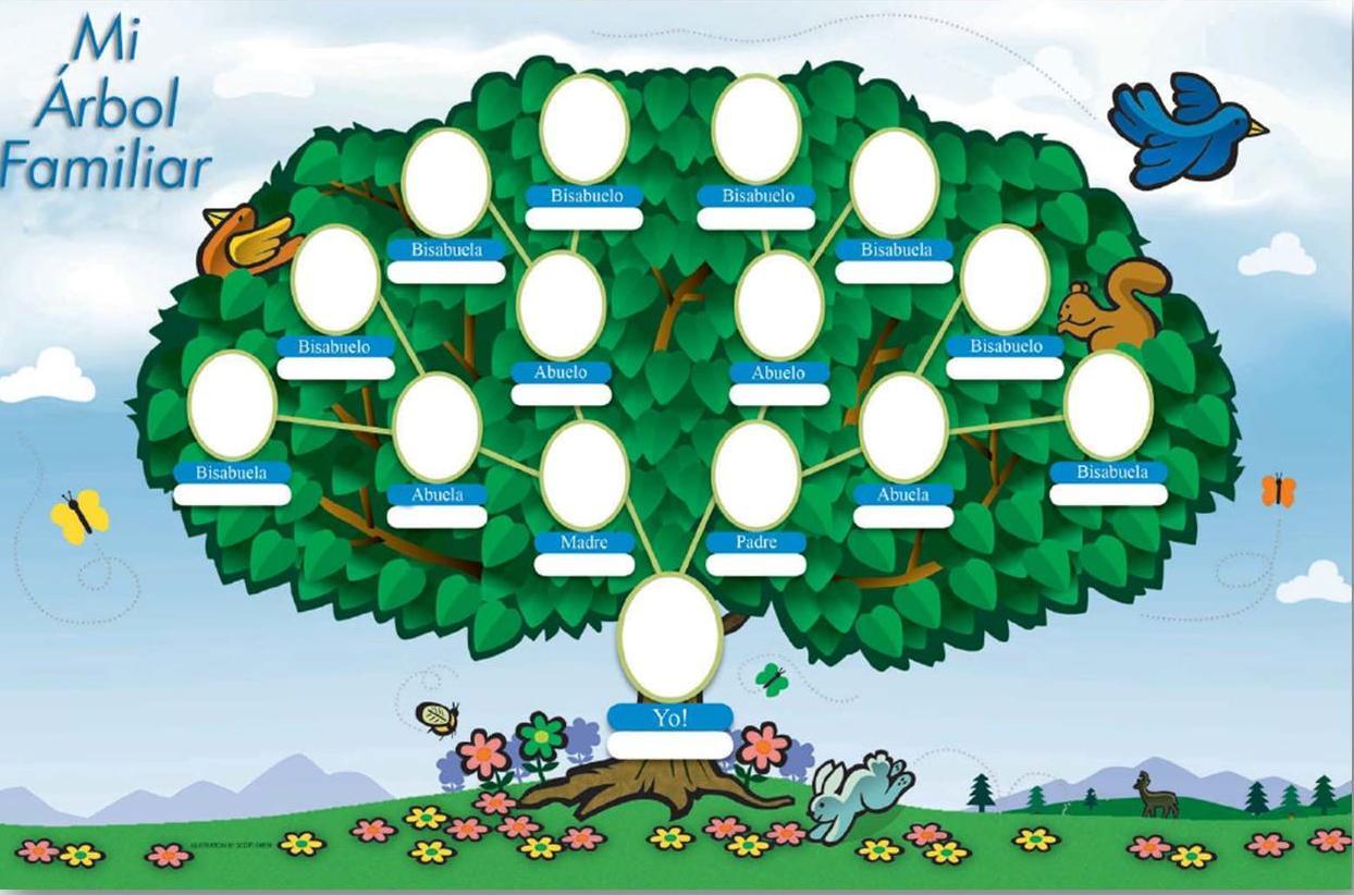 Trabajando el rbol geneal gico con los ni os y de for Nombres de arboles en ingles