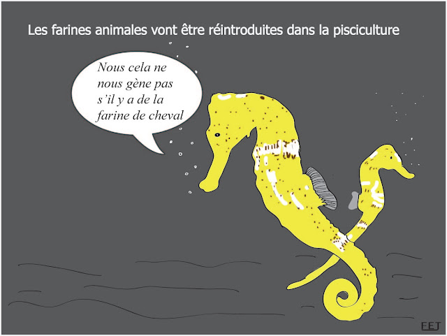 réintroduction-des-farines-animales-fej-dessins