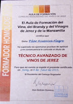 TÉCNICO AVANZADO DE VINOS DE JEREZ