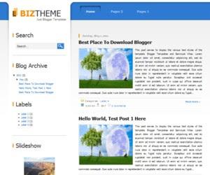 Biz Themes Blogger Template