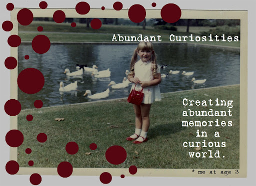 Abundant Curiosities