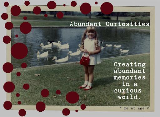 Abundant Curiosities