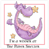 i won at 'Papershelter'