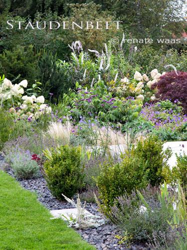 Rasen und Pflanzung in einem privaten Garten - pflegeleicht und ganzjährig attraktiv
